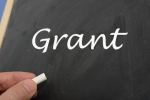 What is a nonprofit Grant System?